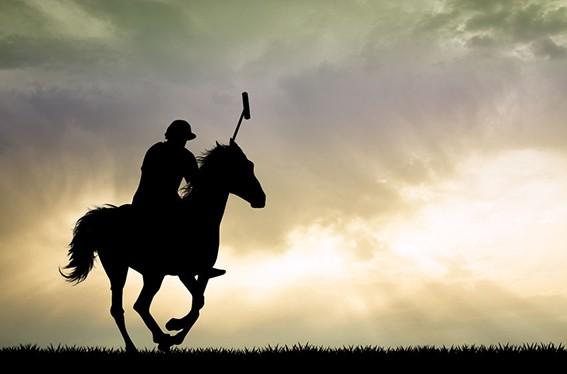Polospieler-auf-Pferd